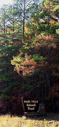 If you want to go hiking or mountain biking among some of the most spectacular scenery anywhere in the United States, come to the Missouri Ozark Plateau Forest Trail, Forest Park, Missouri Hiking, Mark Twain National Forest, Fort Riley, Camping Life, Bike Trails, Route 66, South Dakota
