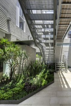 Attractive Musical Stairs An Emblamatic Reform By Leander Angerer And David Ross    Architecture   Pinterest   David, Musicals And Stairs
