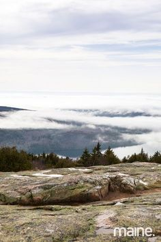 The Gifts of Acadia