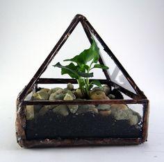 Mini florárium