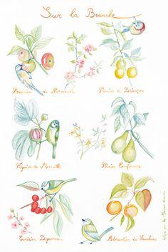 Kids poster : Birds and Fruits of the orchard - kids wall art - kids art print - kids decor