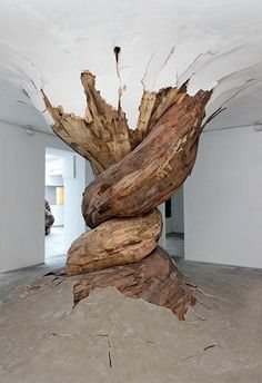 wooden twisted tree trunk grows through floor and ceiling, interesting room center piece