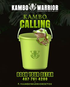 Feel the Kambo Calling? Book your session today! Restore revive and reset your immune system. Feel the Kambo Calling? Book your session today! Restore revive and reset your immune system. Body Detox Cleanse, Detox Your Body, Detox Breakfast, Mind Body Soul, Restore, Restoration, Blog, Feelings, Profile