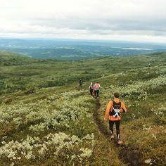 Courir avec un tel paysage autour de soi  ça enlève une grande partie de la difficulté !  #voyage #Travel #Fjällmarathon #sweden #trail #sport #outdoor #amazing by chris_voyage #travel