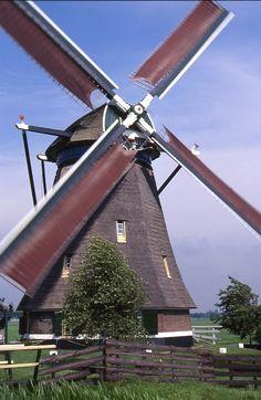 Blauwe molen Hoogmade, The Netherlands