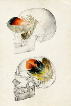Going to post my favorites of these to the main print shop to see how it goes, and so they can be purchased using the half off sale coupon. [HALFSIES]  Feathers In My Head  16x24 Archival Poster Print by caryndrexl, $60.00
