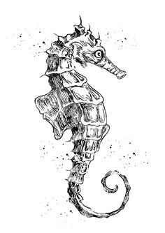 Seahorse-xxx by Erzebet S Seahorse Drawing, Seahorse Tattoo, Sea Tattoo, Animal Sketches, Animal Drawings, Drawing Sketches, Art Drawings, Sea Art, Seahorses