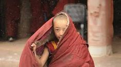 Image result for young tibetan monk