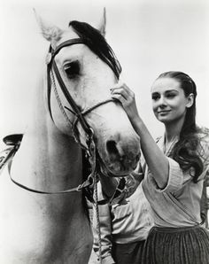 Audrey & horse - An Audrey Hepburn picture that I've actually never seen before!