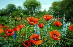 <3 <3 <3 PeterEllenshaw - Red Poppies....  Epcot does a garden of blown glass poppies at the flower show each year...