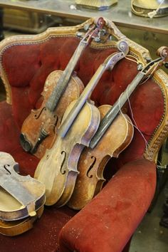 violins ^^l