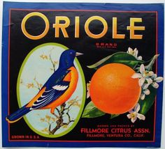 Orange crate labels - pretty way to display as a collection.