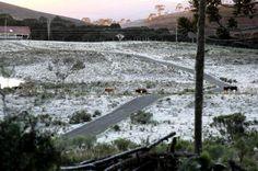 Frio intenso bate recorde com temperatura de -8 na Serra Catarinense. Em São Joaquim houve formação de geada.:imagem 19