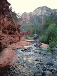 Oak Creek Canyon, Arizona- this place is truly magical!
