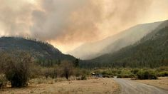The Okanogan Complex Fire near Omak, WA began on Aug. 15, 2015 and has consumed an estimated 256,567 acres. The fire was caused by lightning. USFS photo.