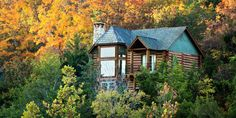 Bunk up and get down with nature. Log cabin getaways...could there be a more perfect vacation!