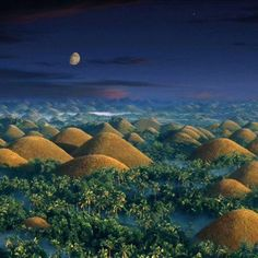 It may looks like another planet from fiction movie, but its real.  Chocolate Hills, Bohol near to Cebu, Philipines.