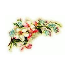 Related image Flower Spray, Vintage Flowers, Planting Flowers, Rings, Floral, Image, Jewelry, Blossoms, Plants
