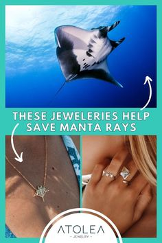 Every purchase of our ocean jewelries help save the manta rays and other marine animals! Be a part of this mission. Learn more about our advocacy at atoleajewelry.com