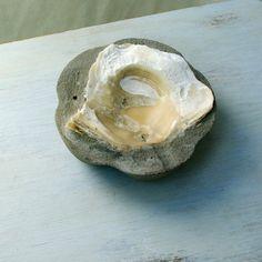 Weiteres - Muschel + Beton = Schale Utensilo bzw Aschenbecher - ein Designerstück von kleine-kunst bei DaWanda