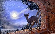 развивающие игры с чёрными котиками