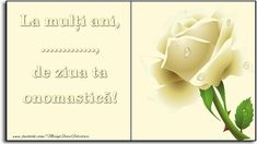 Felicitari personalizate de Ziua Numelui - La mulți ani, de ziua ta onomastică! ... Place Cards, Happy Birthday, Place Card Holders, Sf, Happy Brithday, Urari La Multi Ani, Happy Birthday Funny, Happy Birth