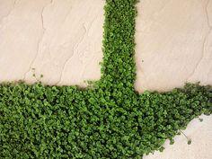 駐車場を緑とウッド門柱で:施工事例:エクステリア(外構造園)工事 - 横浜 風知蒼