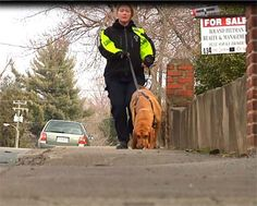 Louisa Bloodhounds Train To Find MISSING PEOPLE