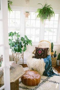 Global Decor Ideas Hanging Plants