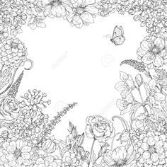 Hand drawn square floral frame with flowers and butterfly. Black and white doodle flowers for coloring. Floral elements for decoration. Flower Doodles, Diy Art Painting, Flower Collage, Greeting Card Art, Black And White Doodle, Flower Coloring Pages, Drawing Frames, Cherry Blossom Art, Flower Line Drawings