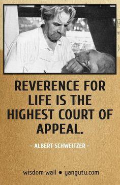 Wisdom Wall Quote- reverence for life... Albert Schweitzer