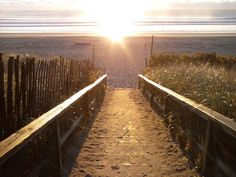 Sunrise-Footbridge Beach Bocce Court, Workout Rooms, Outdoor Pool, Marines, Railroad Tracks, Sunrise, Country Roads, Ocean, Spaces