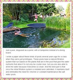 A natural pool that looks like a pond, with a built-on trampoline, that naturally cleans itself!