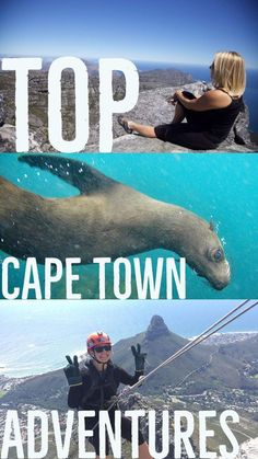Seal Diving, Shark Cage Diving, Bungee Jumping... all are great adventures in Cape Town, South Africa.