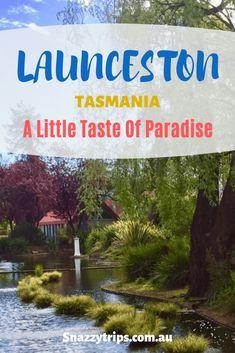 Launceston Tasmania - SNAZZY TRIPS TRAVEL BLOG A little taste of paradise. Find out why   Tamar Valley   Cataract Gorge   Things to do and see #launceston #tasmania #australia