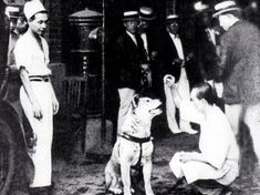 Almost 100 Years Ago, This Dog's Death Was Mourned By Thousands. His Story Brought Me To Tears.