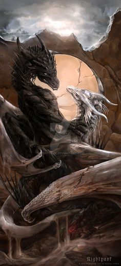 Doubt and Faith by Nightpark on Deviantart / dragons / fantasy creatures / mythical beasts Magical Creatures, Fantasy Creatures, Fantasy Kunst, Fantasy Art, Dragon's Lair, Dragon Artwork, Dragon Pictures, Wow Art, Mythological Creatures