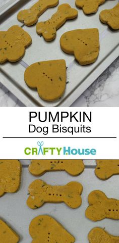 Your Dog Will Love This Pumpkin Biscuit Recipe!