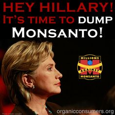 Tell #HillaryClinton: It's time to protect the people and our planet and dump #Monsanto: http://orgcns.org/1oL9iKM