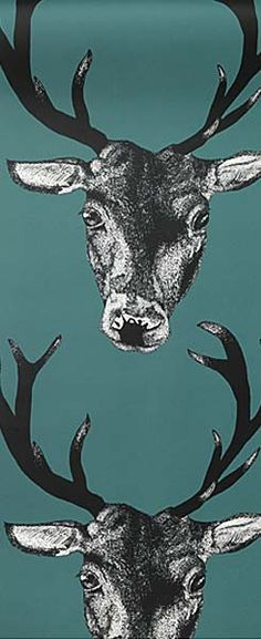 IEGC-Stag-Teal
