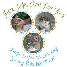"""Cheers to You from The PRC's Rescued Pets. It has been a year full of """"Happy Tails"""" for furry friends and forever families! We are proud to be continuing our 7th year of """"Rescuing Pets, Creating Families, & Saving Lives!"""" Let us recap what we have accomplished thus far."""