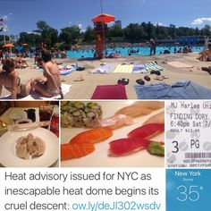 What do you do when an EMERGENCY ALERT for a heatwave is issued in New York City?