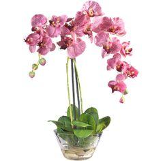 Antibes vase wide the white company spaces dream interior phalaenopsis with glass vase silk flower arrangement mightylinksfo