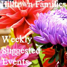 Suggested Events for Month August 15th-21st, 2015 | Hilltown Families