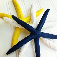 Ici à la noix de coco hêtre nos côtes toujours laver vers le haut de ces étoiles de mer colorés ! Cette liste est pour 3 étoiles de mer - bleu marine, jaune, blanc    Ils sont 6-7 en taille. Chacun est peint et enduit clair pour la longévité. Trous peuvent être tapés dans le dos à la demande pour le montage mural. Des rabais sont accordés aux ordres supérieurs à 10. Si vous souhaitez des couleurs personnalisées message sil vous plaît notre boutique.    Idées de décoration :  Décoration de…