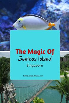 The Magic Of Sentosa Island. The State of Fun - this attribute describes Sentosa Island the best. Endless hours of fun, adventure and excitement await !