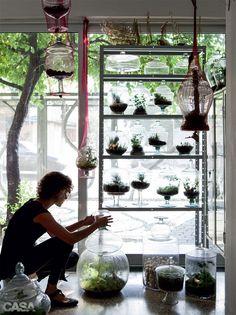 008-aprenda-a-fazer-um-terrario