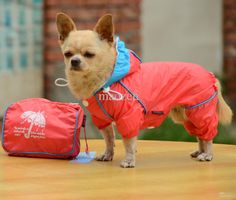 Wholesale cheap dog raincoats and jackets online, brand - Find best dog raincoat, pet 4 feet rain coat for dog, waterproof hoodie, factory price at discount prices from Chinese dog apparel supplier - maozen on DHgate.com.