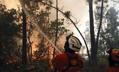 Incendios forestales: claves para una buena redacción…