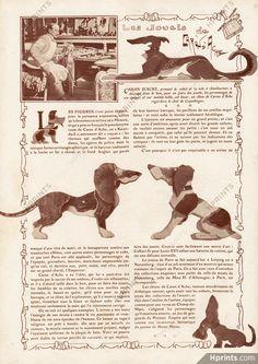 Les Chiens de Caran d'Ache 1906 Toys illustré par Caran d'Ache (Emmanuel Poiré) — image de mode Image Mode, Caran D'ache, Images, Movies, Movie Posters, Art, Digital Image, Dogs, Art Background